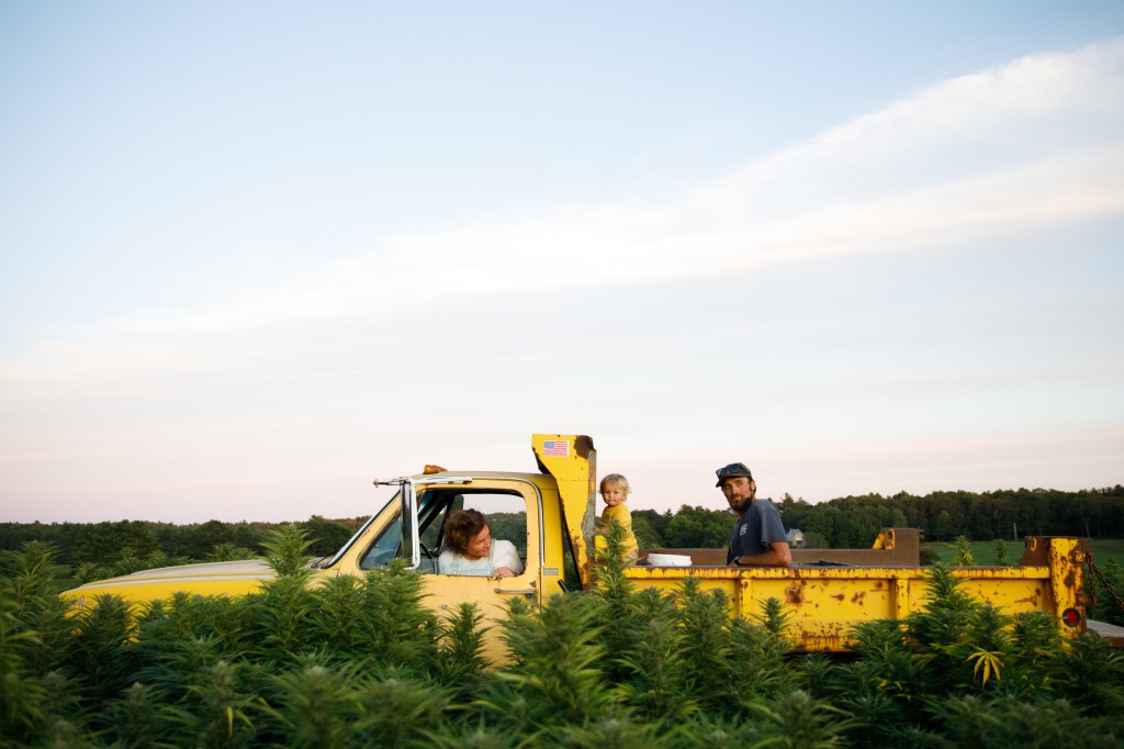 The Sheepscot General organic hemp farm and yellow truck.