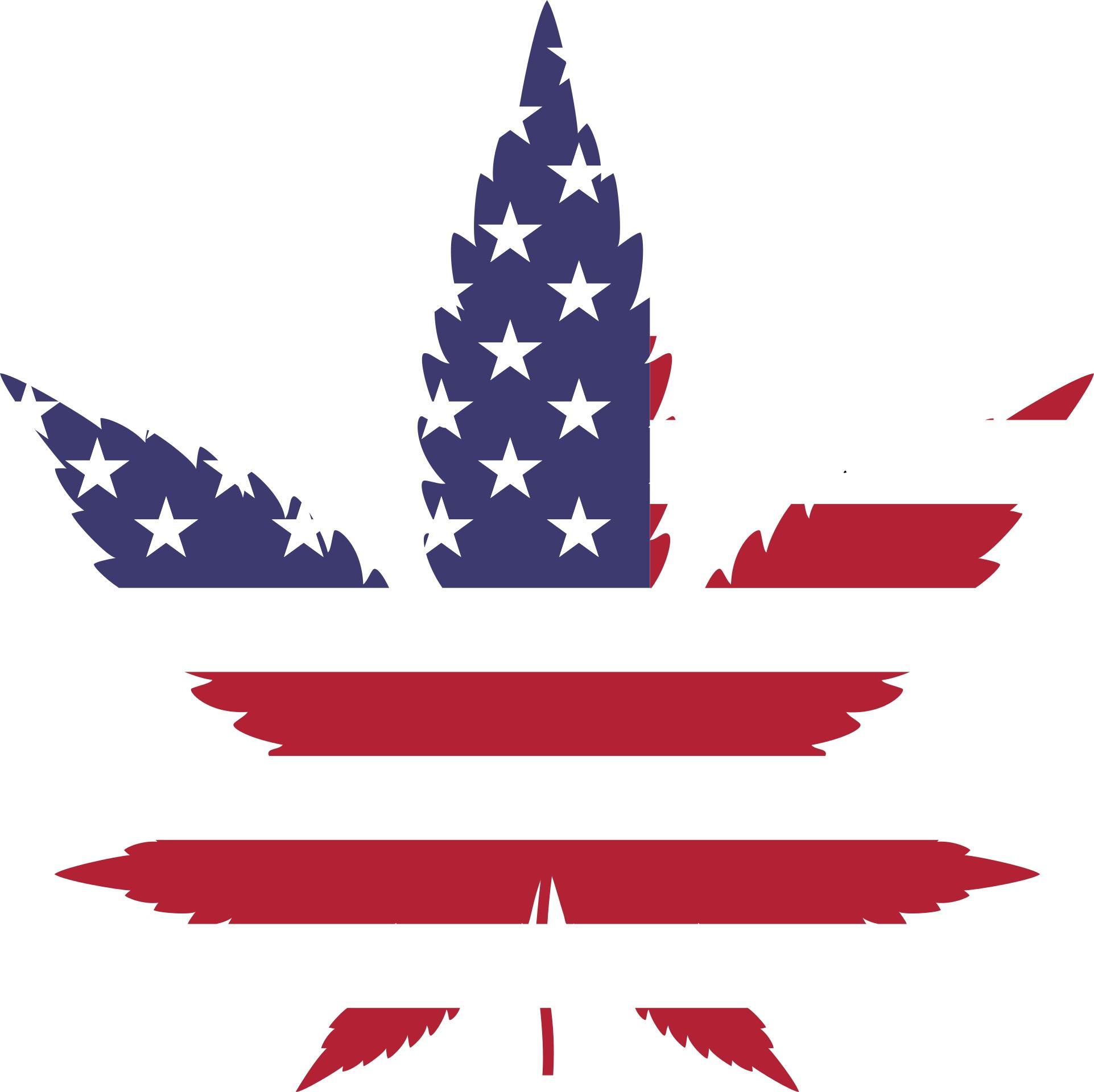 Marijuana leaf/American flag graphic.