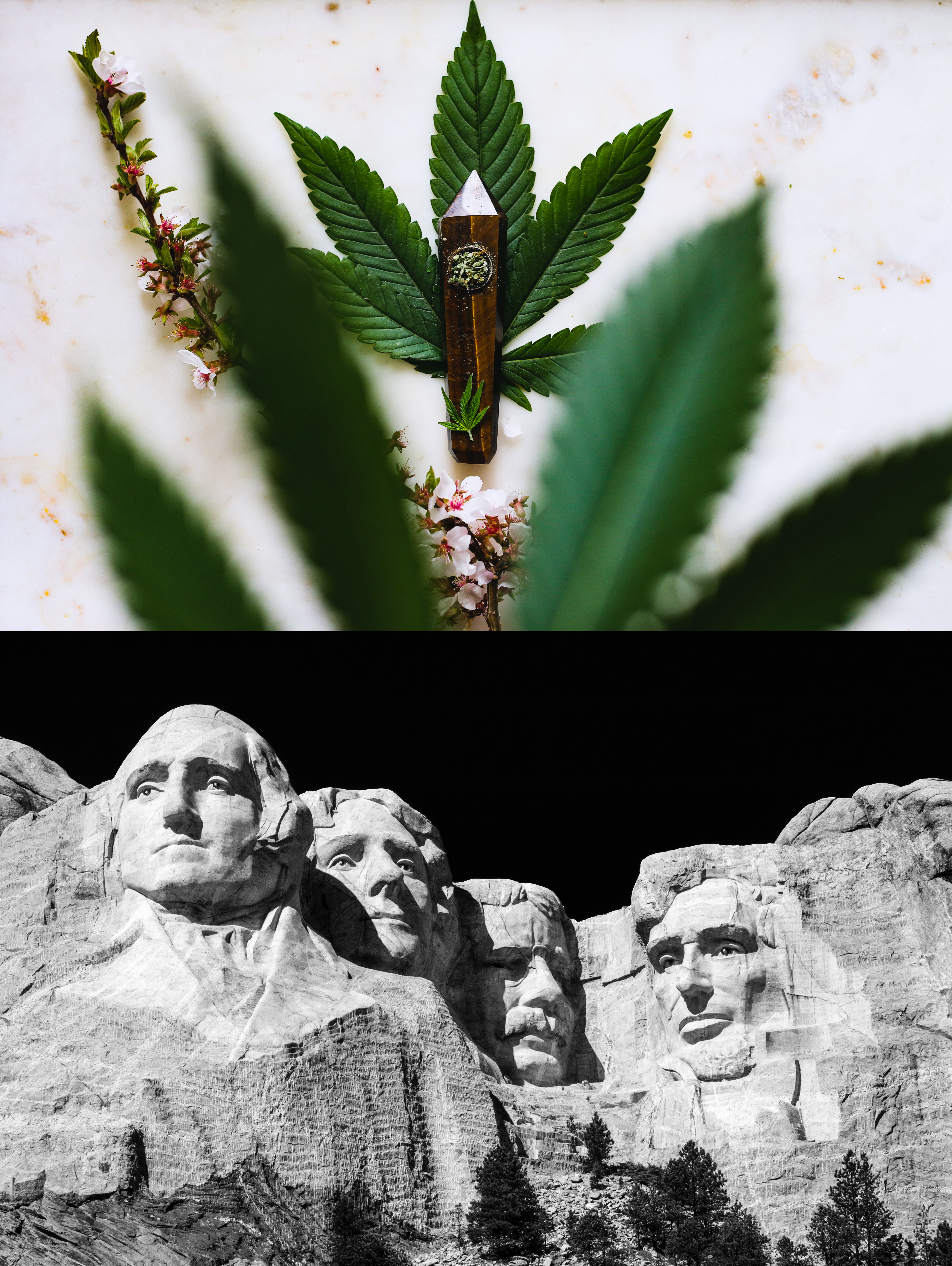 (Top) Marijuana leaf and pipe. (Bottom) Mt. Rushmore, South Dakota.