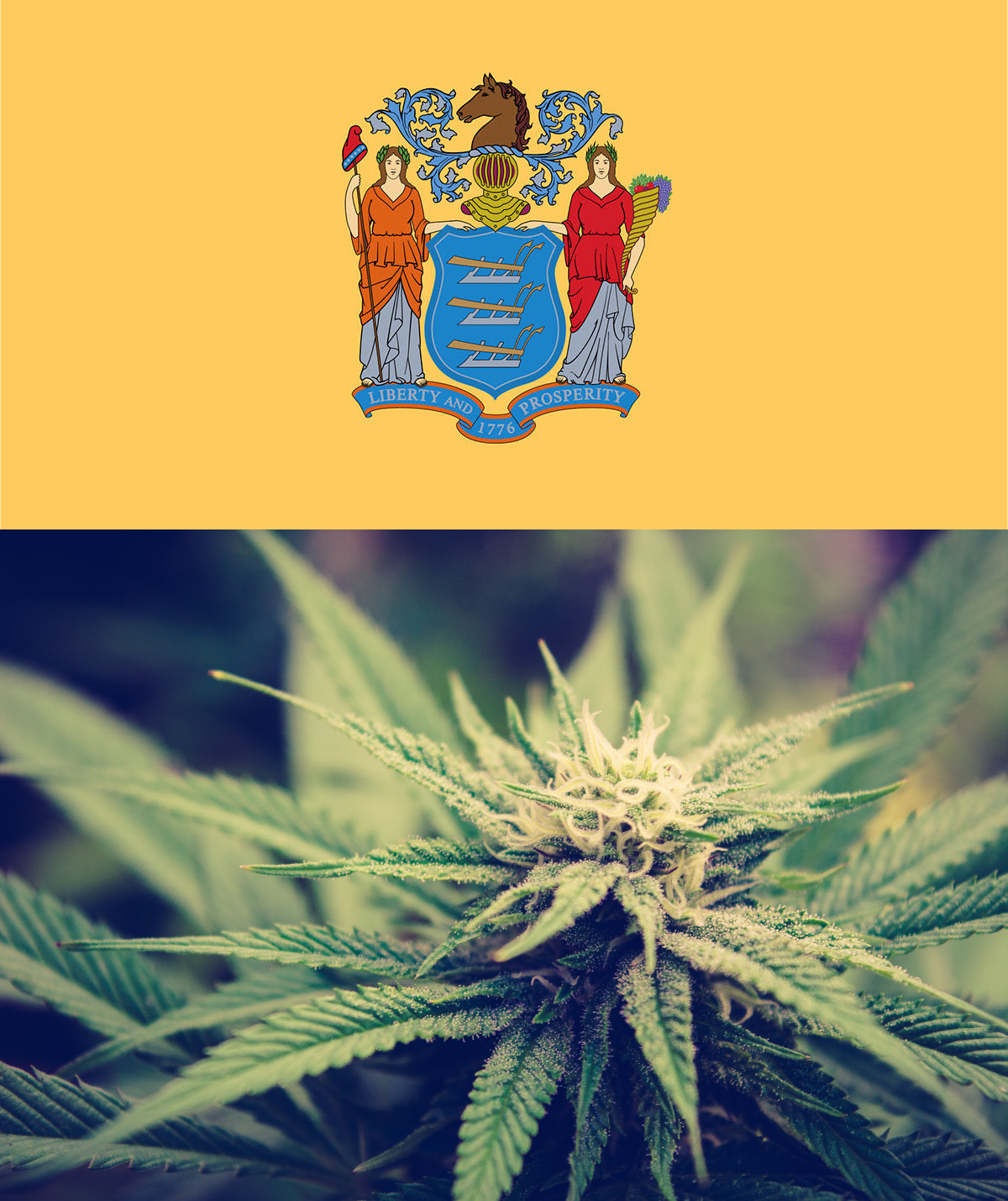 (Top) New Jersey state coat of arms. (Bottom) Marijuana plant.
