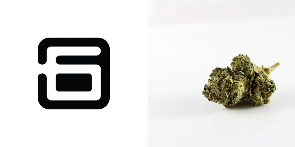 (Left) Alt Thirty Six logo. (Right) Marijuana bud.