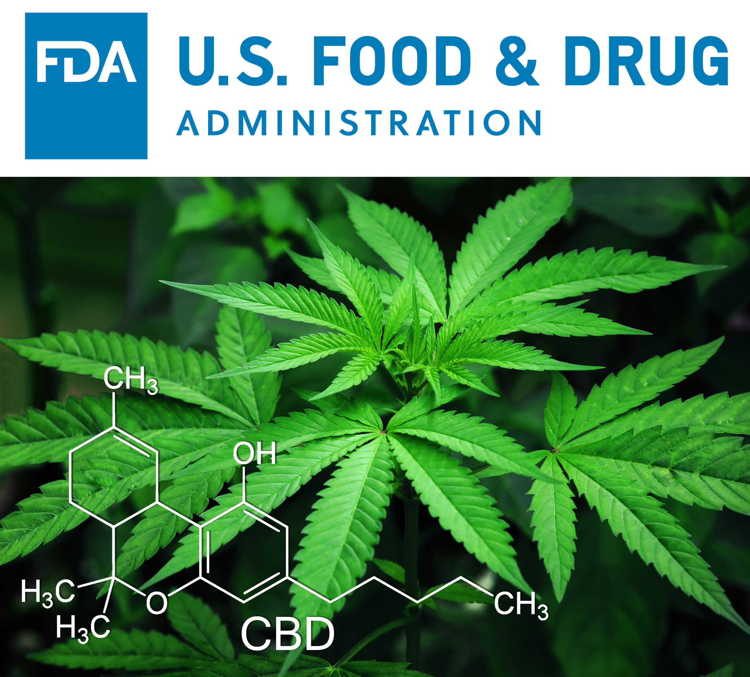 (Top) FDA logo. (Bottom) Hemp plant showing CBD compound.